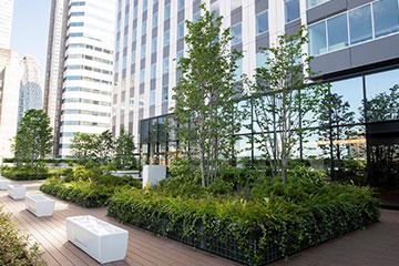 9階フロアの屋上庭園は、憩いの場となっています。